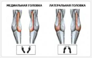Постановка ног