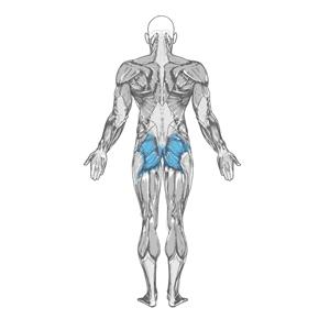 какие мышцы качатся ягодичным мостиком